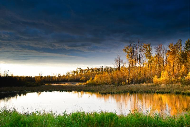 Scenic views of Elk Island National Park, Alberta Canada