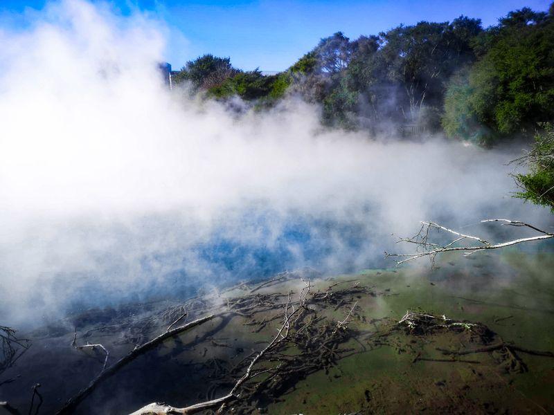 The steaming lake and boiling mud in Kuirau Park, Rotorua