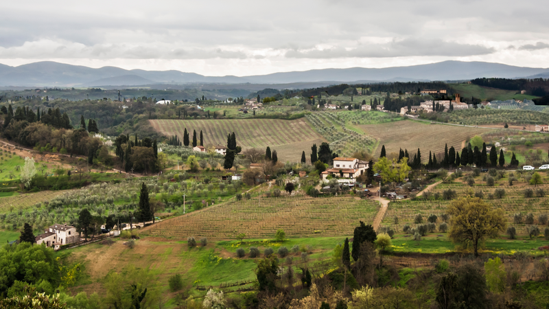 Vineyards and countryside in Chianti