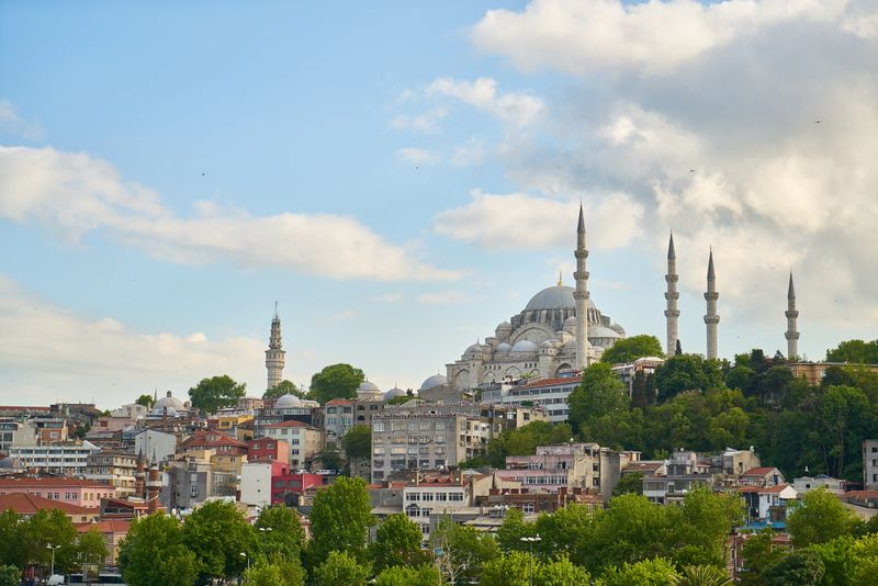 The Blue Mosque and tree line in Sultanahmet