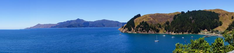 A panoramic view of the Marlborough Sounds