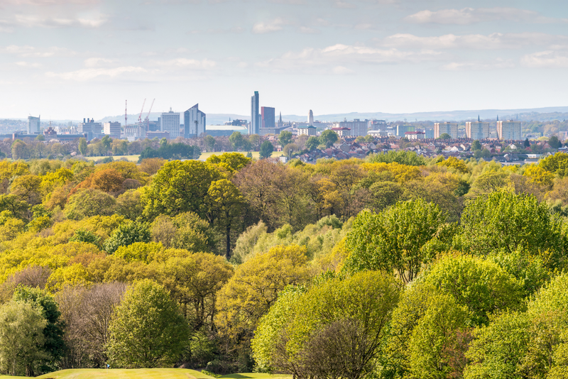 Leeds skyline over trees