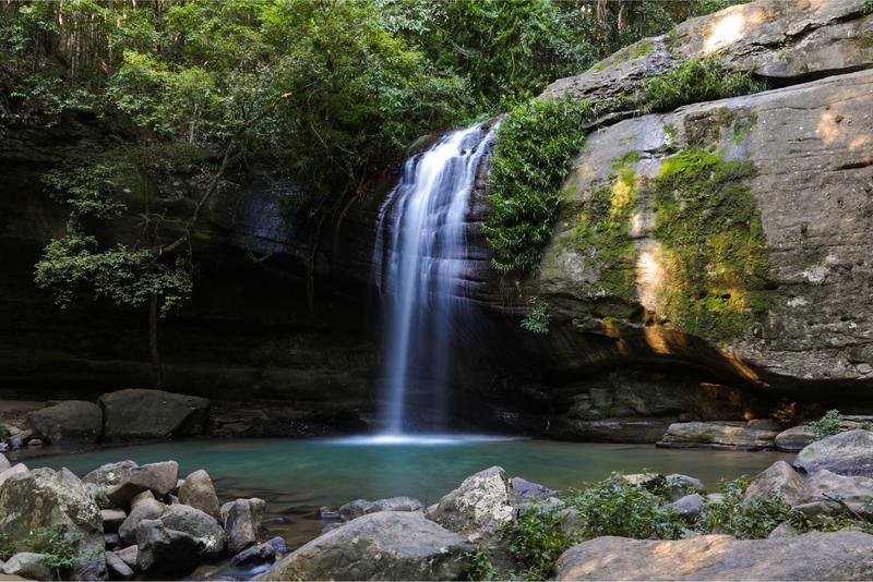 Buderim Waterfall, Sunshine Coast. Queensland