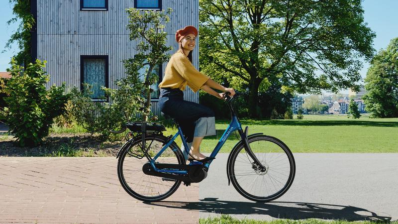 d-BURST e-bike