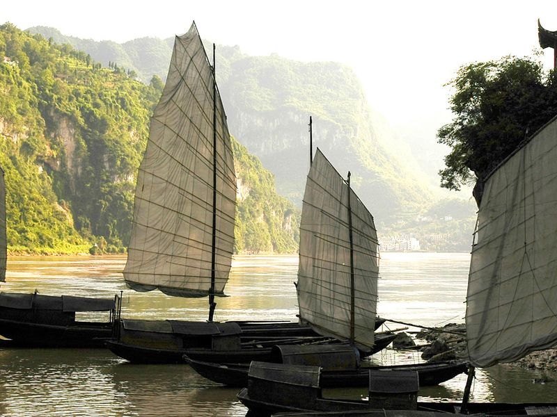 three sail boats tied up on shore of river