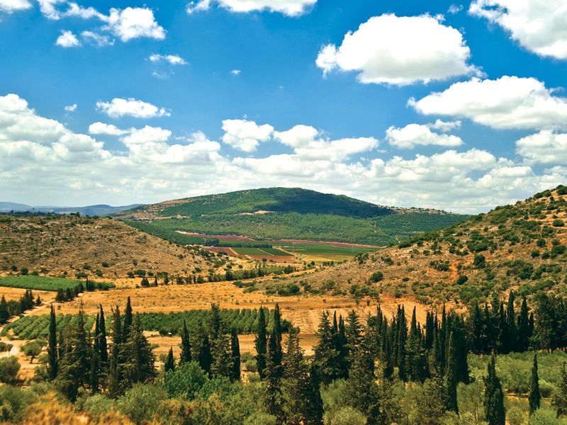 natural landscapes of israel on sunny day