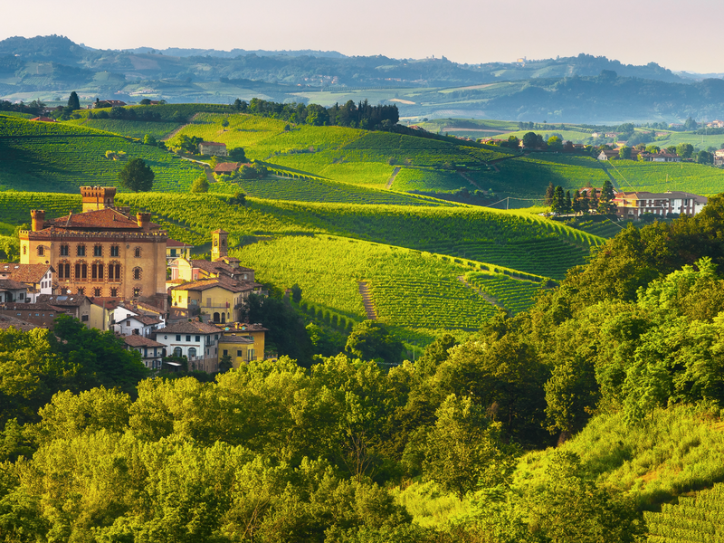green landscapes dotted with buildings in the barolo region