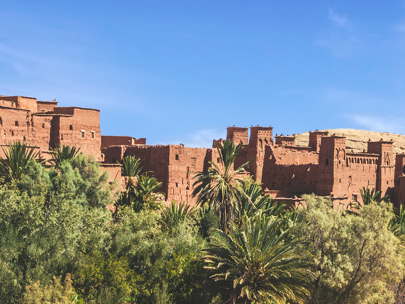 tan buildings and palm trees in ouarzazate