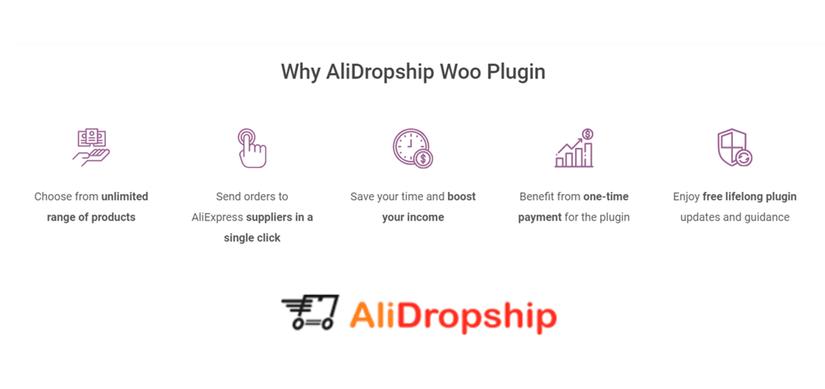AliDropship Website