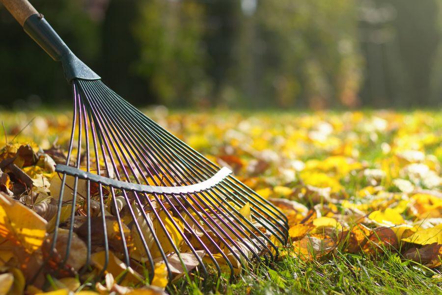 Herbst / Winter