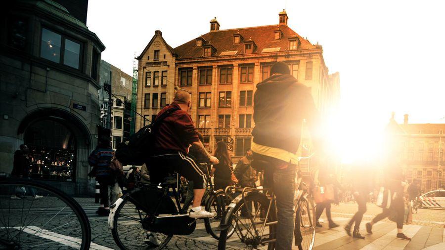 Fietsverkeer in Amsterdam voor stoplicht met zon