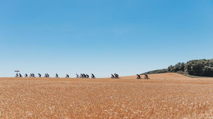 Pagina di filosofia - immagine dei ciclisti su strada che passano da un campo
