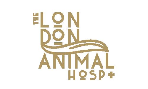 the london animal hospital