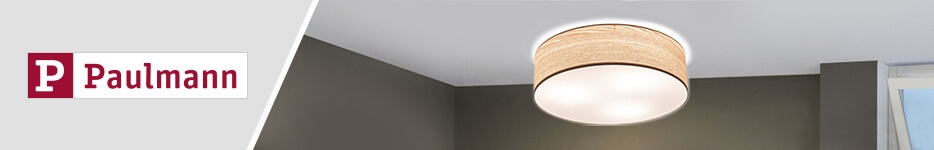 Paulmann lighting