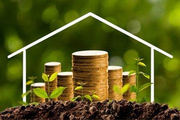 So wächst und gedeiht der Wert Ihres Hauses
