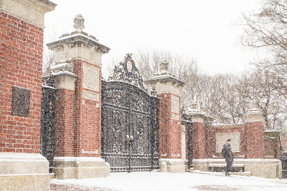 Brown university supplemental essay help