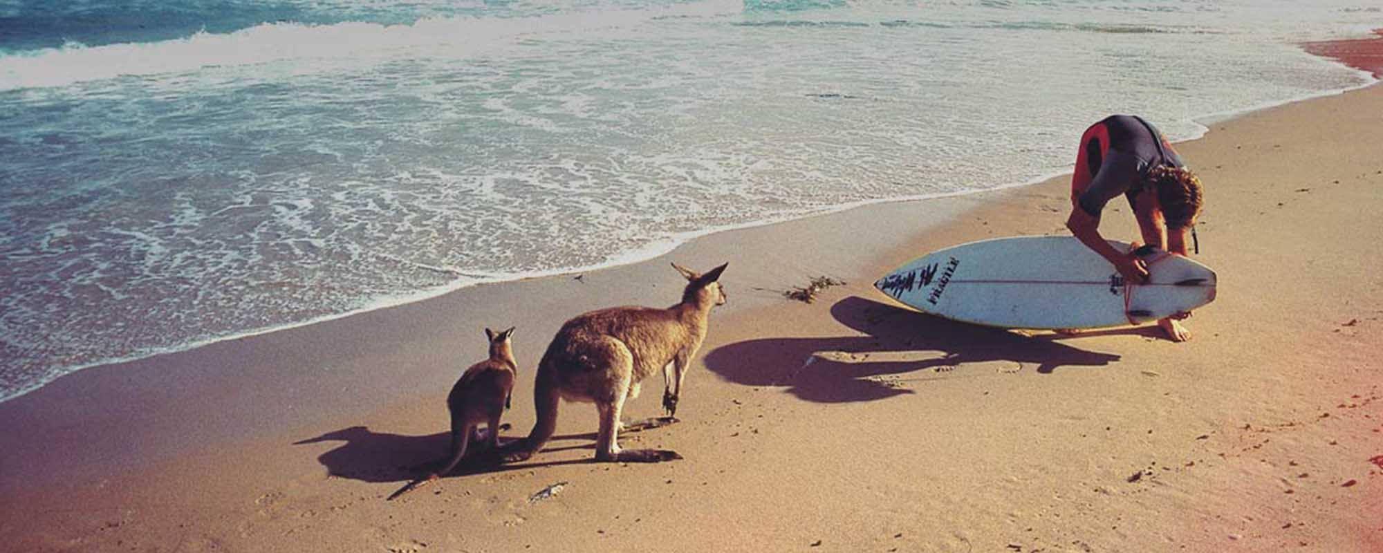 Un anno in Australia