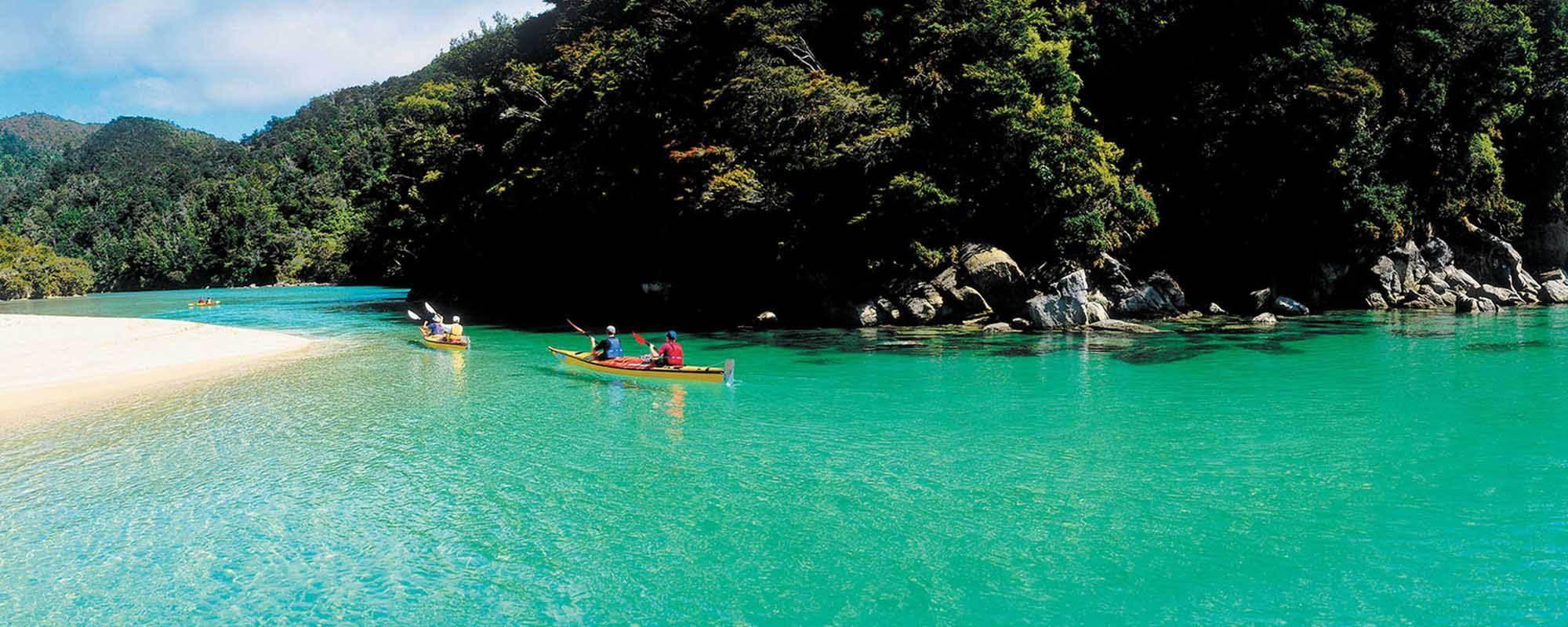 College in Nuova Zelanda