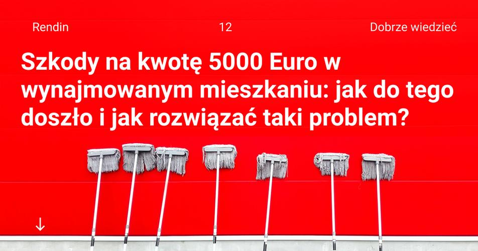 Szkody na kwotę 5000 Euro w wynajmowanym mieszkaniu: jak do tego doszło i jak rozwiązać taki problem?